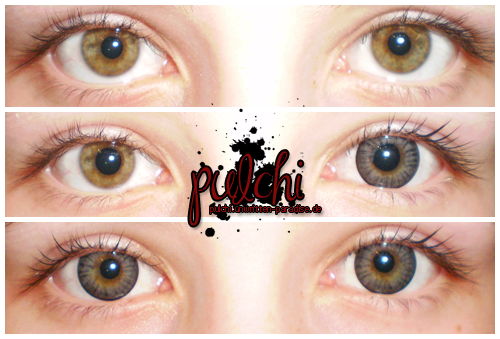 #0168 [Review] Circle Lenses ~ Circle Grey Black