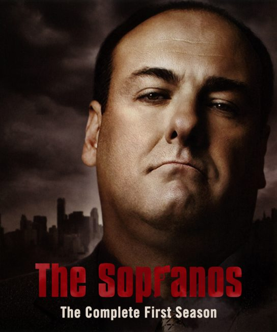 Die Sopranos ~ Staffel 1