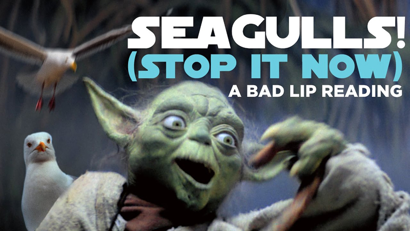 #0755 [Spotlight] SEAGULLS! (Stop It Now)