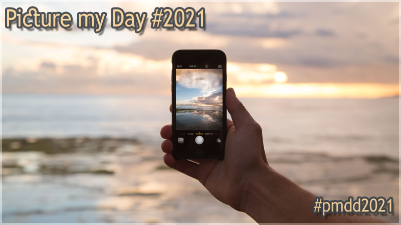 "#1058 [Spotlight] ""Picture my Day"" Day #2021"